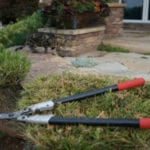 Let the experts at Outdoor Craftsmen prune your small trees and shrubs this winter